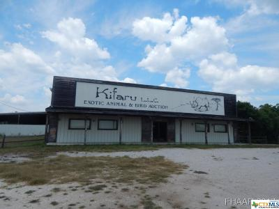 Lampasas Commercial For Sale: 10831 S Highway 183