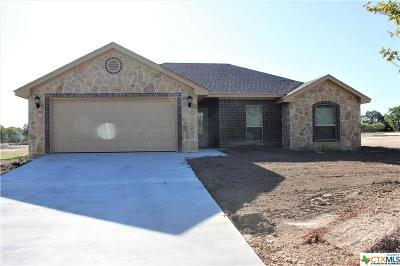 Single Family Home For Sale: 254 Old Waco Road