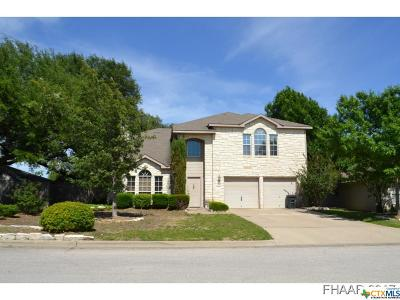 Harker Heights Single Family Home For Sale: 2205 Chippewa Drive