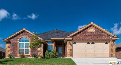Killeen Single Family Home For Sale: 7605 Zircon Drive