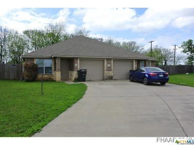 Killeen Multi Family Home For Sale: 4109 Cambridge Drive