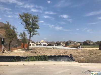 Harker Heights Single Family Home Pending Take Backups: 807 Old World Drive