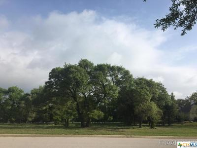 Harker Heights Residential Lots & Land For Sale: 3213 Eagle Ridge