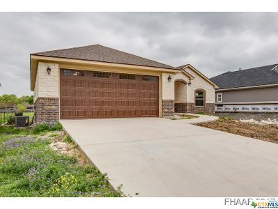 Salado Single Family Home For Sale: 329 O W Lowrey Drive