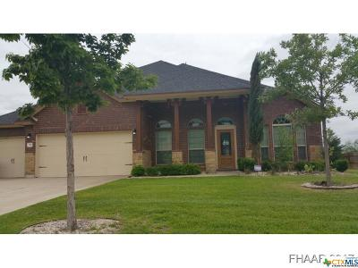 Harker Heights Single Family Home For Sale: 3910 Scenic Trail Drive