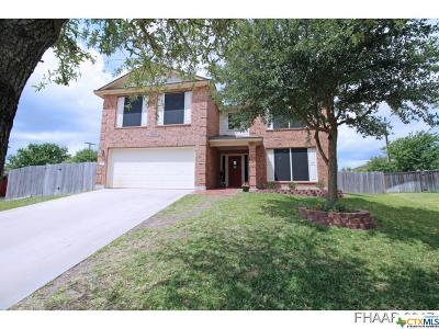 Savannah Hgts Single Family Home For Sale: 208 Fitzgerald Lane