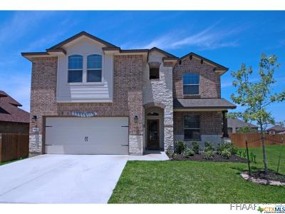 Harker Heights Single Family Home For Sale: 821 Terra Cotta Court