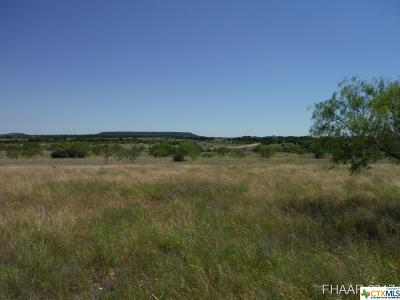 Bell County, Burnet County, Coryell County, Lampasas County, Llano County, Mills County, San Saba County, Williamson County, Hamilton County Residential Lots & Land For Sale: Tract 4 Private Road 3642