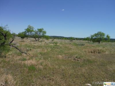 Bell County, Burnet County, Coryell County, Lampasas County, Llano County, Mills County, San Saba County, Williamson County, Hamilton County Residential Lots & Land For Sale: Tract 5 Private Road 3642