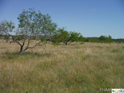 Bell County, Burnet County, Coryell County, Lampasas County, Llano County, Mills County, San Saba County, Williamson County, Hamilton County Residential Lots & Land For Sale: Tract 6 Private Road 3642