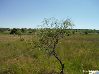 Bell County, Burnet County, Coryell County, Lampasas County, Llano County, Mills County, San Saba County, Williamson County, Hamilton County Residential Lots & Land For Sale: Tract 12 Private Road 3642