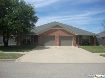 Killeen Multi Family Home For Sale: 4607-4609 Hitchrock & Agate Drive