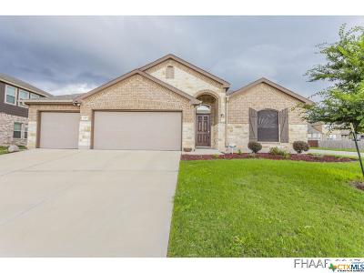 Killeen Single Family Home For Sale: 6401 Serpentine Drive