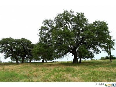 Lampasas Residential Lots & Land For Sale: County Road 1255