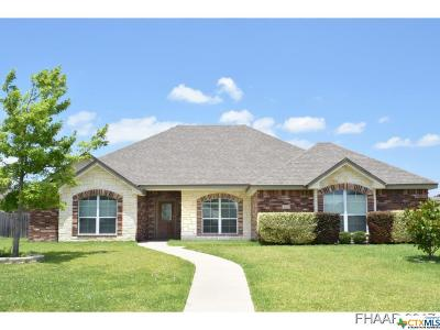 Harker Heights Single Family Home For Sale: 2501 Leatherwood Drive