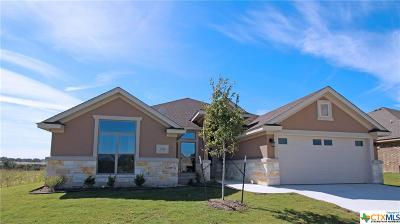 Bell County, Coryell County, Lampasas County Single Family Home For Sale: 7701 Zircon Drive