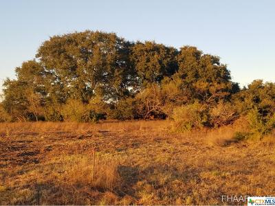 Lampasas Residential Lots & Land For Sale: Tract 13 Cr 1255