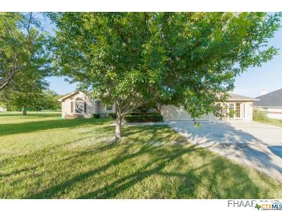 Lampasas Single Family Home For Sale: 528 County Road 3433