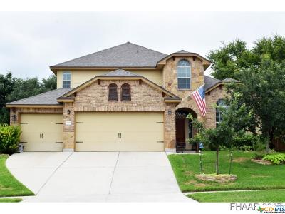 Killeen Single Family Home For Sale: 5309 Sulfur Spring Drive