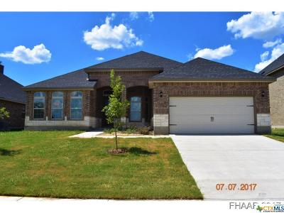Killeen Single Family Home For Sale: 6213 Morganite Lane