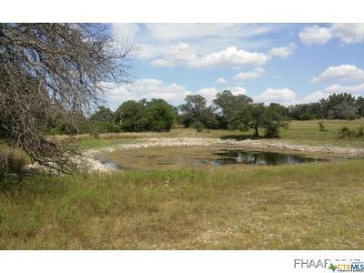 Killeen Residential Lots & Land For Sale: 24.86acre Unasigned Jt Carpener Survey
