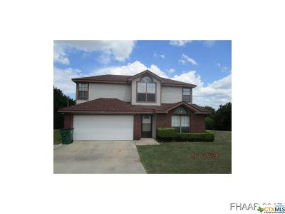 Kempner Single Family Home For Sale: 3135 Etta Kay Lane