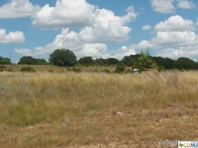 Commercial For Sale: Tbd Us Highway 281