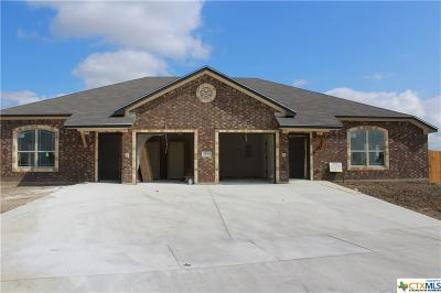 Killeen Multi Family Home For Sale: 200 Sladecek Drive