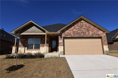 Killeen  Single Family Home For Sale: 6203 Morganite Lane