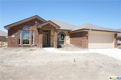 Bell County, Coryell County, Lampasas County Single Family Home For Sale: 6711 Catherine Drive