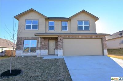 Killeen Single Family Home For Sale: 3808 Appalachian Trail