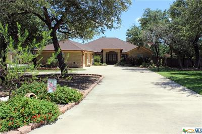 Belton Single Family Home For Sale: 9901 Arroyo Drive
