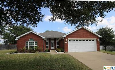 Skipcha Mt. Est Single Family Home For Sale: 509 Red Cloud Drive