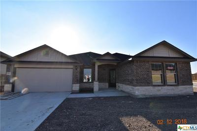 Killeen Single Family Home For Sale: 7507 Pyrite Drive