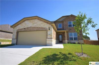 Killeen Single Family Home For Sale: 2900 John Helen Drive