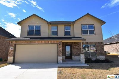 Killeen Single Family Home For Sale: 7509 Pyrite Drive
