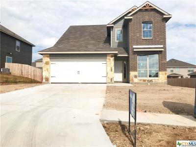 Bell County, Coryell County, Lampasas County Single Family Home For Sale: 3611 Loma Gaile Lane