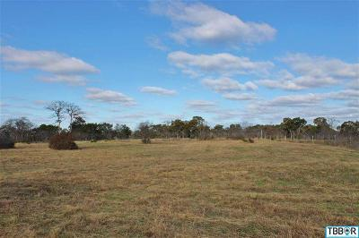 Belton Residential Lots & Land For Sale: 183 Indian Ridge Road