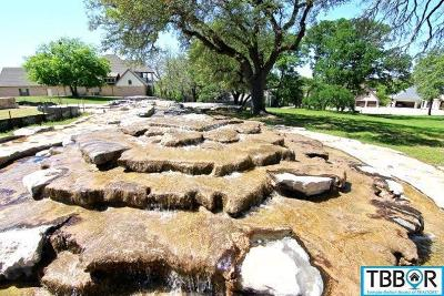 Temple Residential Lots & Land For Sale: 6631 Misty Creek Lane