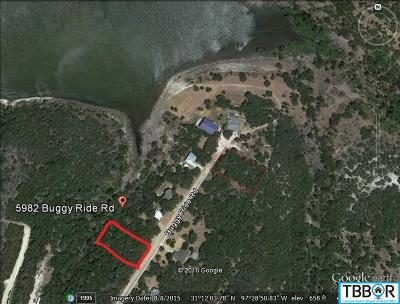 Bell County Residential Lots & Land For Sale: 5994 Buggy Ride