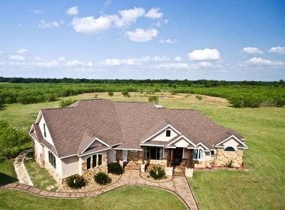 Seguin Single Family Home For Sale: 477 Strey Lane