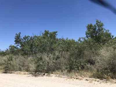 Brackettville, Del Rio, Comstock Residential Lots & Land ACTIVE: 8-E Moreno Valley Estates