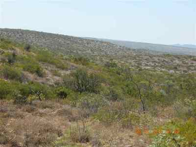 Residential Lots & Land ACTIVE: Lot 20 Rio Grande River Ranch Jnt Vent