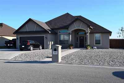 Single Family Home UNDER CONTRACT-OPTION: 517 Quail Creek Dr