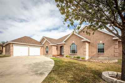 Single Family Home ACTIVE: 114 Saddle Blanket