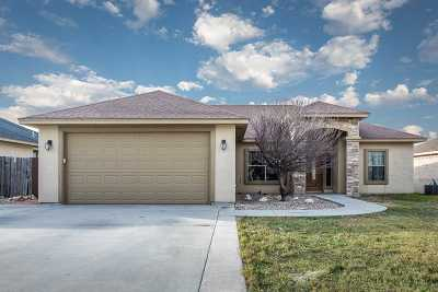 Brackettville, Del Rio, Comstock Single Family Home UNDER CONTRACT-OPTION: 206 Javier