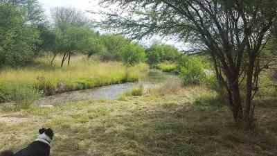 Del Rio Residential Lots & Land ACTIVE: 780 Jap Lowe Dr