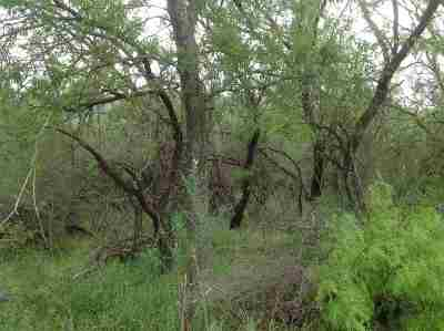 Brackettville, Del Rio, Comstock Residential Lots & Land ACTIVE: Tract 1562 Juno-Acres 86.92