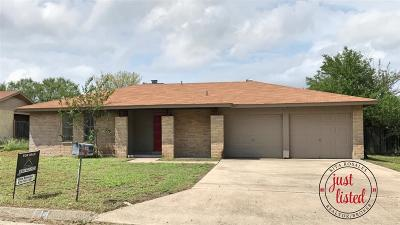 Del Rio Single Family Home NEW: 104 Sombrero