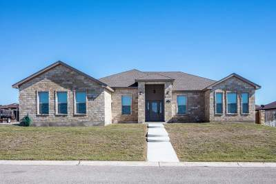 Del Rio TX Single Family Home UNDER CONTRACT-CONTINGENT: $247,200